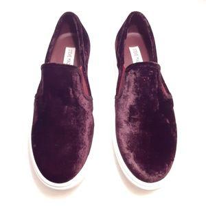 Steve Madden Burgundy Velvet Slip on shoes